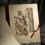 Bruni HeymArtista - Este libro de artista, con u